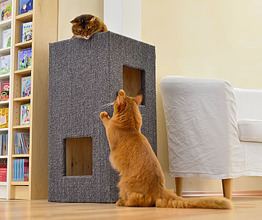 Cat Tree CONVENIENT I - More product information