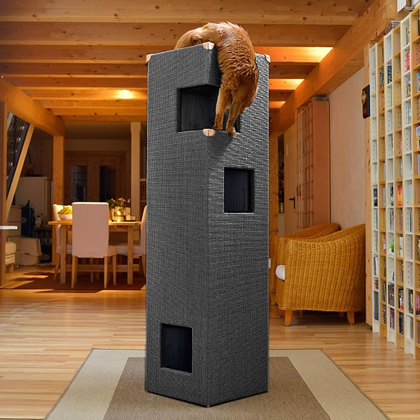kratzbaum online shop kratzbaum dome anthrazit natur ohne lederecken. Black Bedroom Furniture Sets. Home Design Ideas