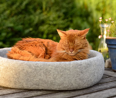 felted Cat Bed Shelly - More product information