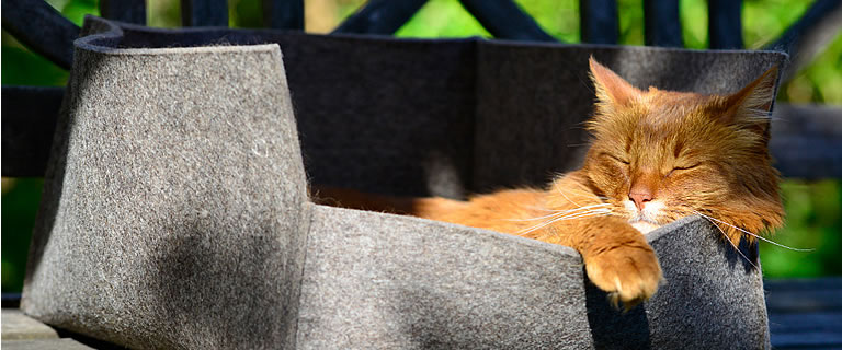 Katzenbett GROOVIE - Ansehen im Kratzbaum Online Shop