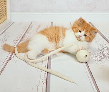 gefilztes Katzenspielzeug Glöckchenball - Weitere Produkt-Informationen