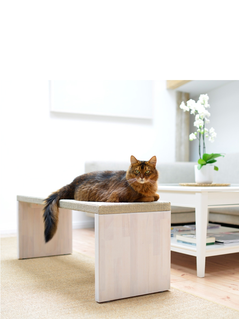 kratzbaum online shop kratzm bel katzenm bel reserved. Black Bedroom Furniture Sets. Home Design Ideas